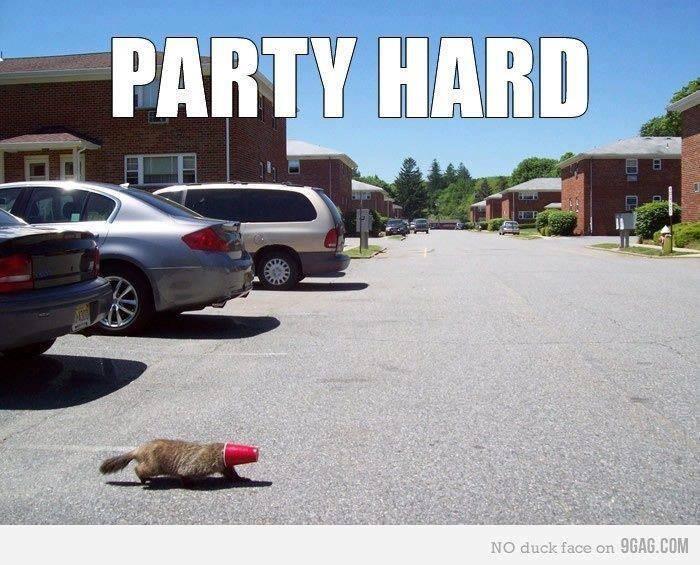 älter werden, party hard