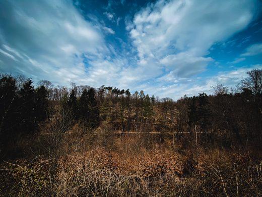 Grube Cox, Hike, Wanderung, Bergisches Land, Natur